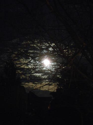 DSCN0151 _ Moon Rise, December 2013