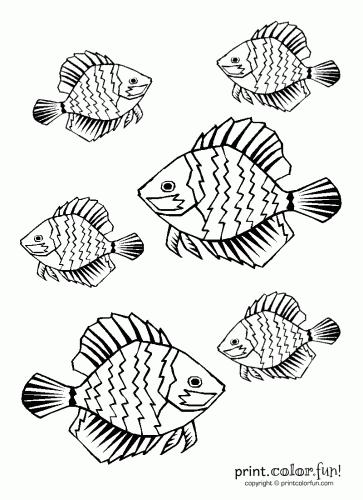 Tropical fish coloring page - Print. Color. Fun!