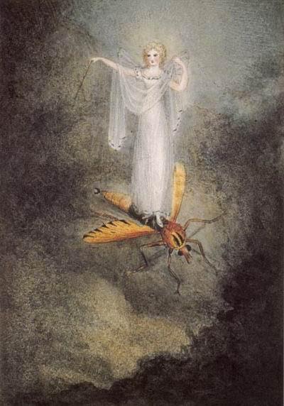 Amelia Jane Murray, The Moth Fairy 1800s