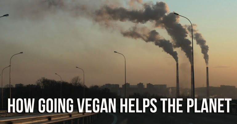 Eating meat contributes to climate change