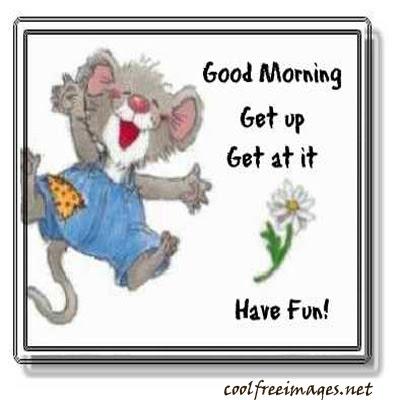 Debarinciou Funny Good Morning Quotes