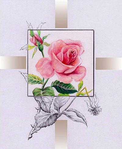 Thánh giá và Hoa hồng