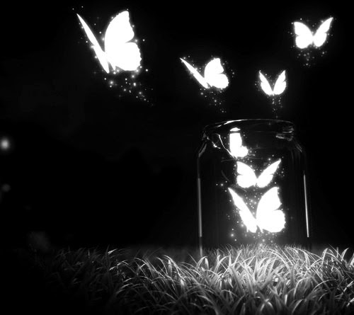 YOU CAN'T BOTTLE UP NATURE. NATURE NEEDS TO BE FREE. FLY AWAY PRETTY BUTTERFLIES.