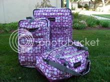 Pink Luggage