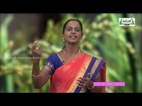 12th Home Science உணவு பாதுகாப்பு அத்தியாயம் 3 Kalvi TV