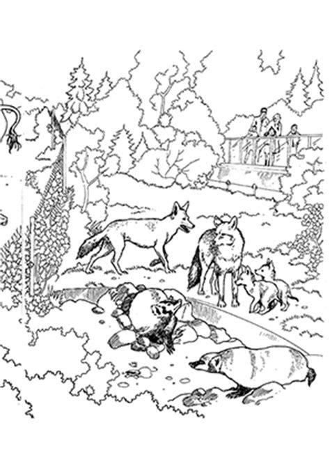 ausmalbilder tiere füchse  kostenlose malvorlagen ideen