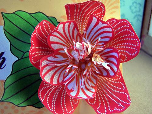tropical flower close-up