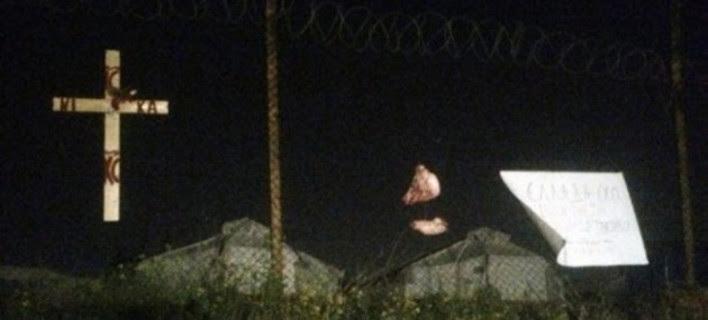 Εικόνες-σοκ: Κάρφωσαν γουρουνοκεφαλή στο hotspot του Σχιστού! [εικόνες]