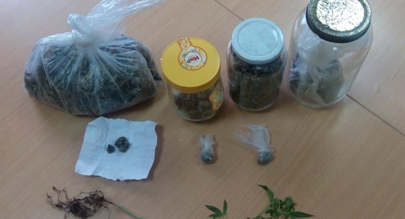 Κατάκολο: Συνελήφθησαν δυο αδέρφια για καλλιέργεια και κατοχή ναρκωτικών