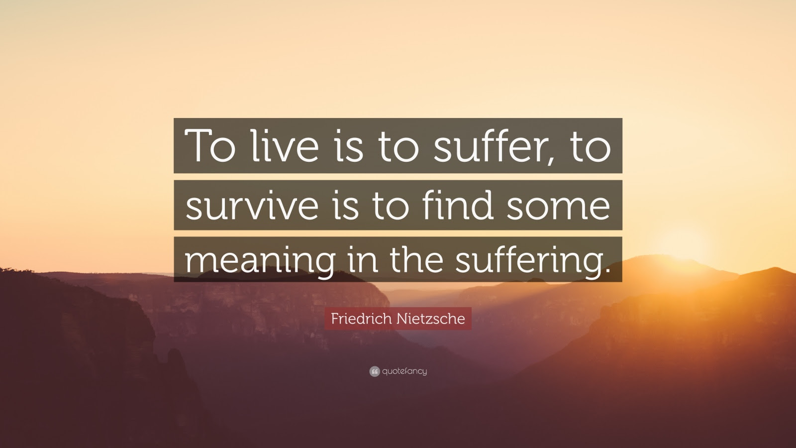 Quotes About Finding Meaning In Suffering 13 Quotes