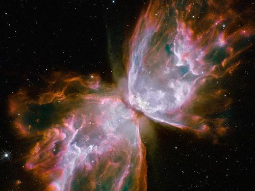 motyle, lepidoptera, astronomia, mgławica emisyjna, konstelacja łabędzia, gwiazdozbiór, obłok pyłu międzygwiezdnego i gazu, astronomia, fizyka
