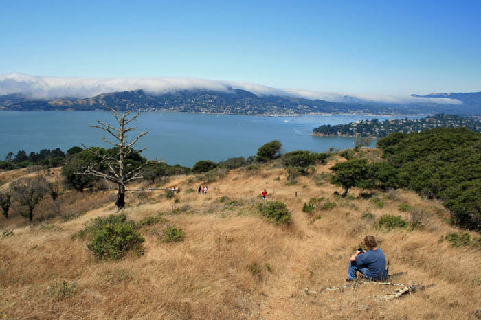 Angel Island Scout Trip (85)