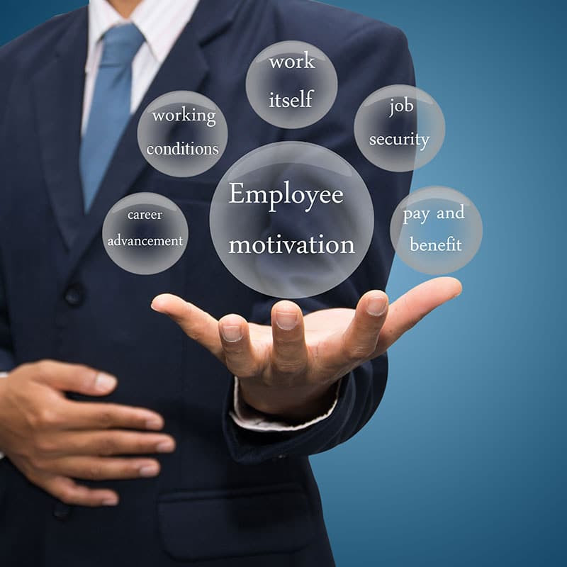 Competitive Employee Benefits Package Options