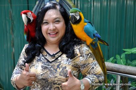 Maria Bersama Burung Kakak Tua Di Lost Word of Tambun