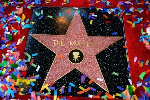 Il 2466 ° stella sulla Hollywood Walk of Fame onorare The Muppets di fronte al El Capitan Theatre il 20 marzo 2012 a Hollywood, California.  (Photo by Frazer Harrison / Getty Images)
