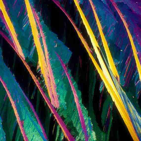 Φωτογραφίες αλκοολούχων ποτών από μικροσκόπιο