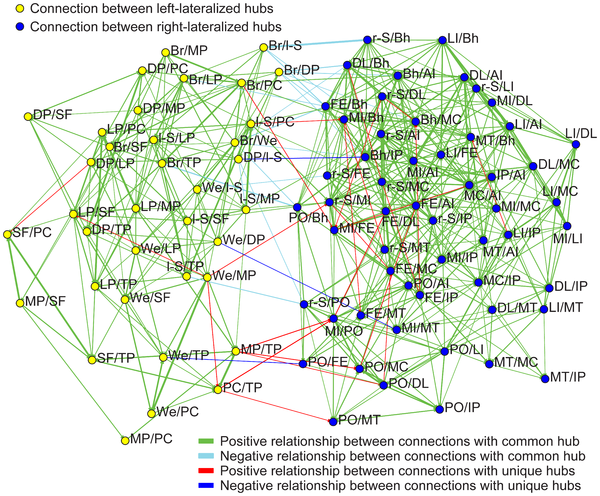 Figure 5 Significant correlation of lateralized connections across subjects.