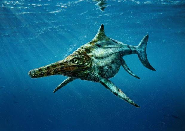 Ilustração mostra a espécie marinha 'Dearcmhara shawcrossi', que viveu há 170 milhões de anos onde atualmente é a Escócia. Réptil marinho foi descrito por cientistas (Foto: Todd Marshall/Reuters)