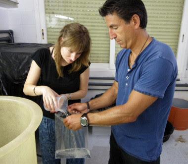 <p>Investigadores durante la recogida de muestras. / Fundación Descubre</p>