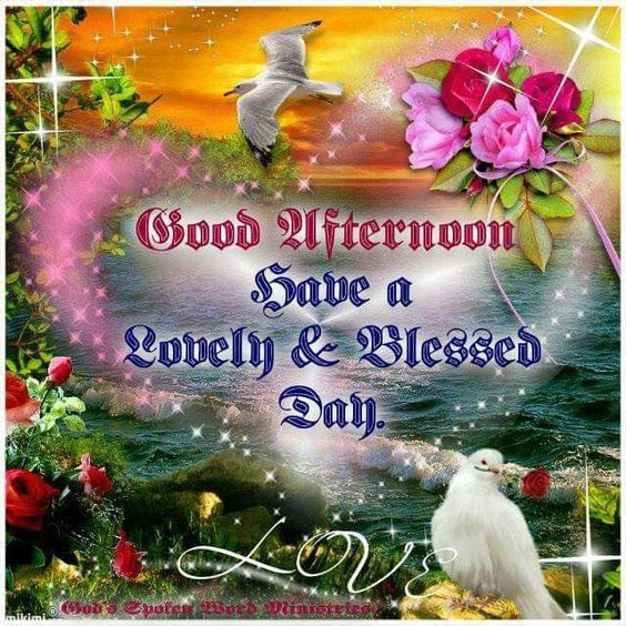 Good Afternoon Have A Lovely Blessed Day Pictures Photos And