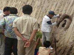 Penemuan Fosil