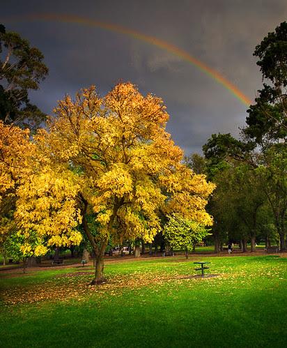Coburg Lake Reserve, Melbourne, Victoria, Australia IMG_6093_Coburg