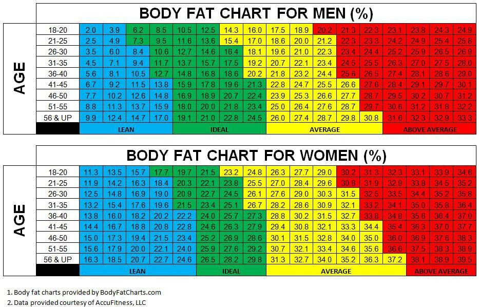 body fat percentage reduction plan