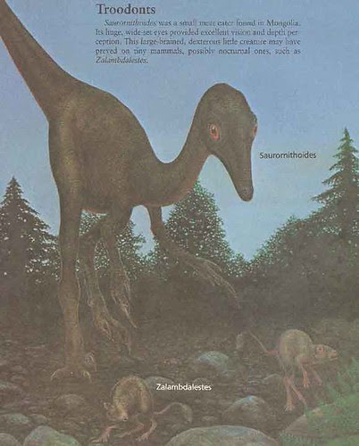 _Dinosaurs and Other Archosaurs_ p.65