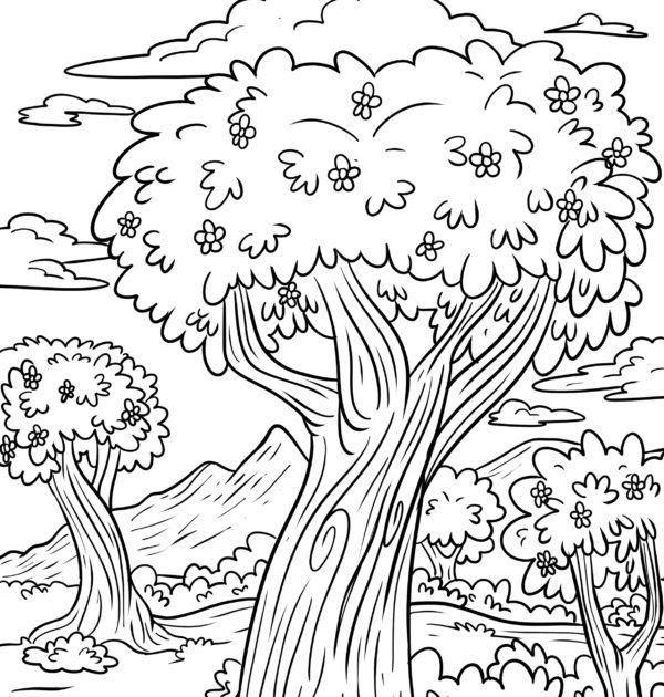 gambar mewarnai pohon