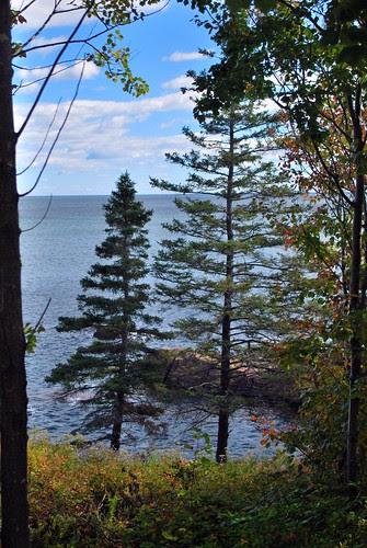 Acadia Scenery