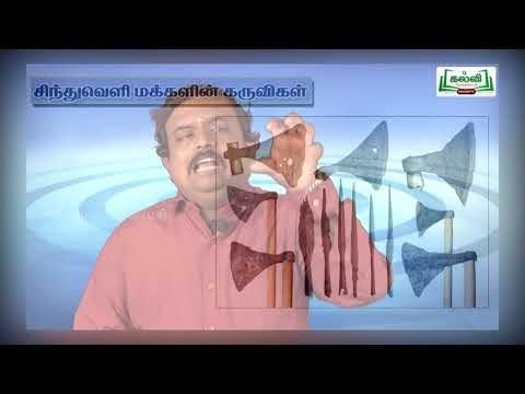 11th Ethics and Indian Culture பாடம் 2 சிந்துவெளி நாகரீகம் பகுதி 2 Kalvi TV