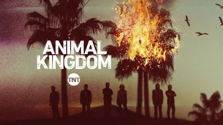 "Animal Kingdom - Betrayal - Review: ""Smurf Still Pulls the Strings"""