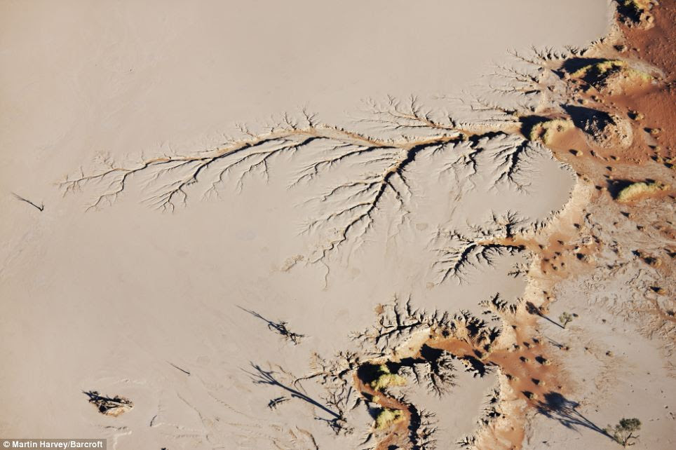 Unrecognisable: Seen from the air, this picture of Sossusvlei in Namibia is almost unrecognisable as a desert landscape