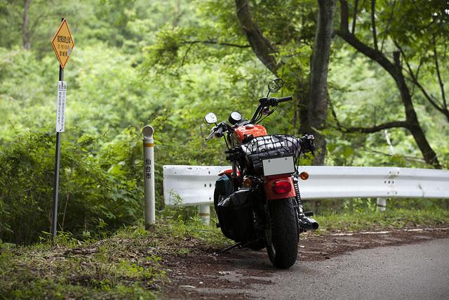 Harley Davidson XL 883R 044