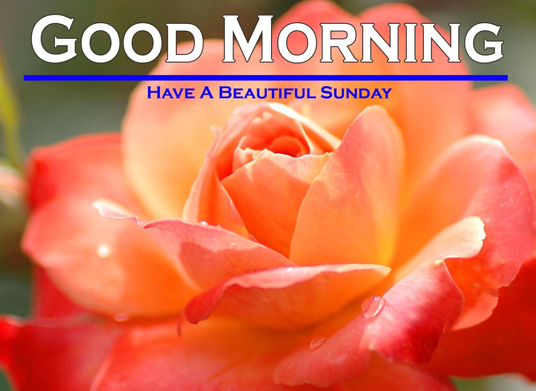 Sunday Good Morning Images 5 1