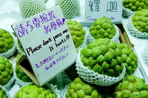 Taiwan (75 of 89)