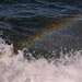 Boat Rainbow