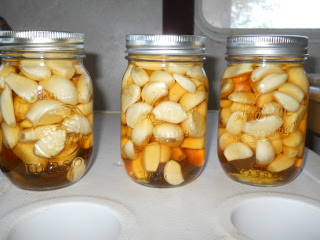 Preserving Garlic - Garlic Cloves in Apple Cider Vinegar