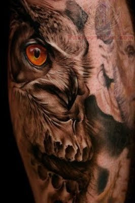 Owl Skull Eye Tattoo