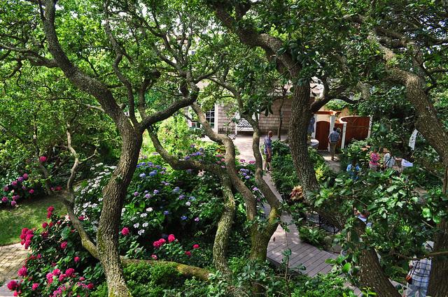 Campbell Garden (15)