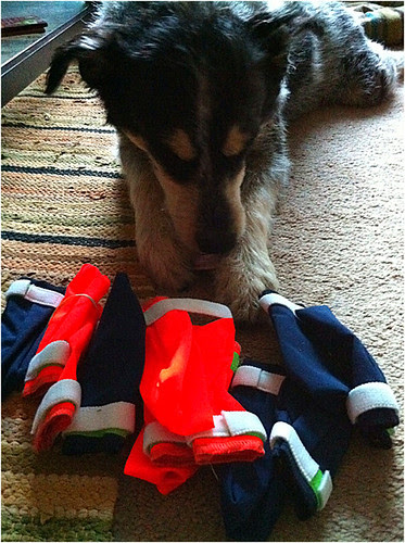 My new mitten supply came!