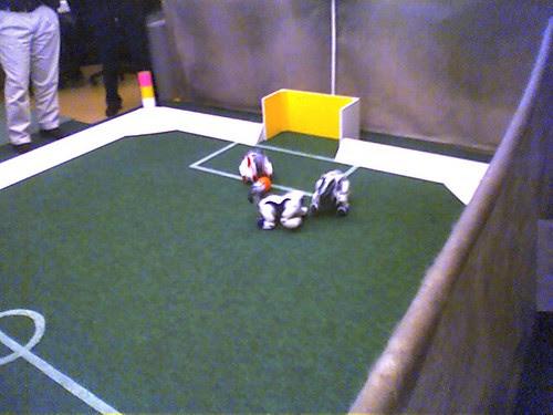 Robot dogs playing soccor