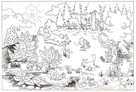 awesome wildness  forests  forests coloring pages