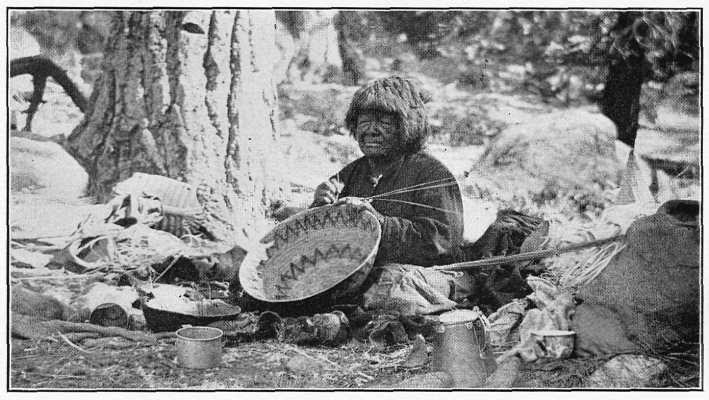 Photo of Old Kalapine