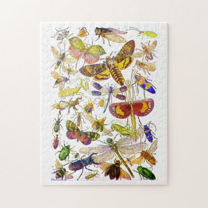 Insects Jigsaw Puzzle | Creepy Crawlies