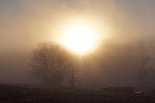 Foggy morning by David P James