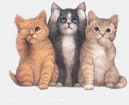 animasi bergerak kucing lucu gif gif images