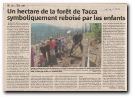 actions bénévoles pour le reboisement autour d'Aullène