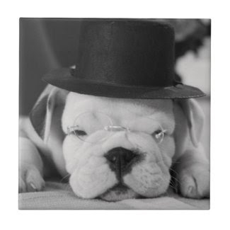 """Einstein"" English Bulldog Puppy Small Square Tile"