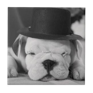 """""""Einstein"""" English Bulldog Puppy Small Square Tile"""